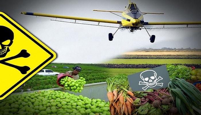 contaminación por pesticidas