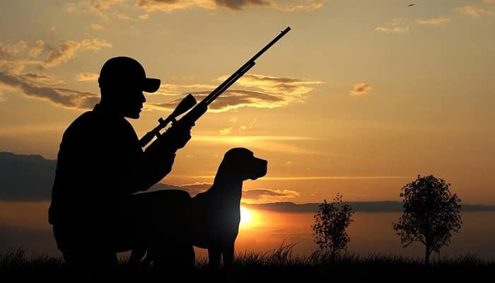 caza excesiva